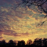 Schemering bij zonsondergang
